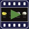 Ciência do Polysulphate: um fertilizante multi-nutriente exclusivo